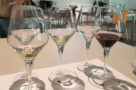 Wines & Wineries You Can't Miss | Quinta de Santiago